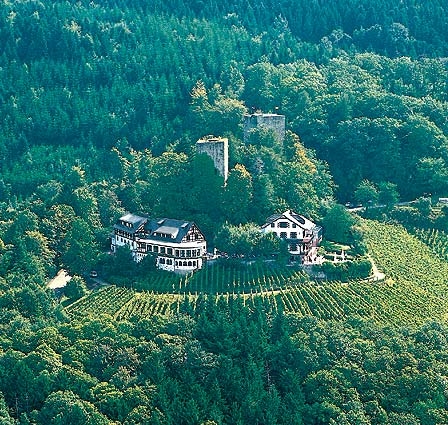 Burg Windeck Hotel und Restaurant-Burg Windeck Hotel und Restaurant